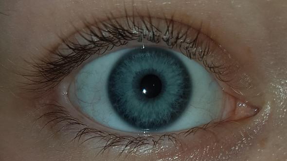 Auge - (Augen, Farbe, Meinung)