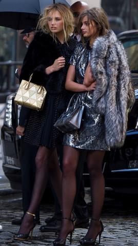 Die goldene und die Silberne auf dem foto😊 - (Mode, Fashion, Tasche)
