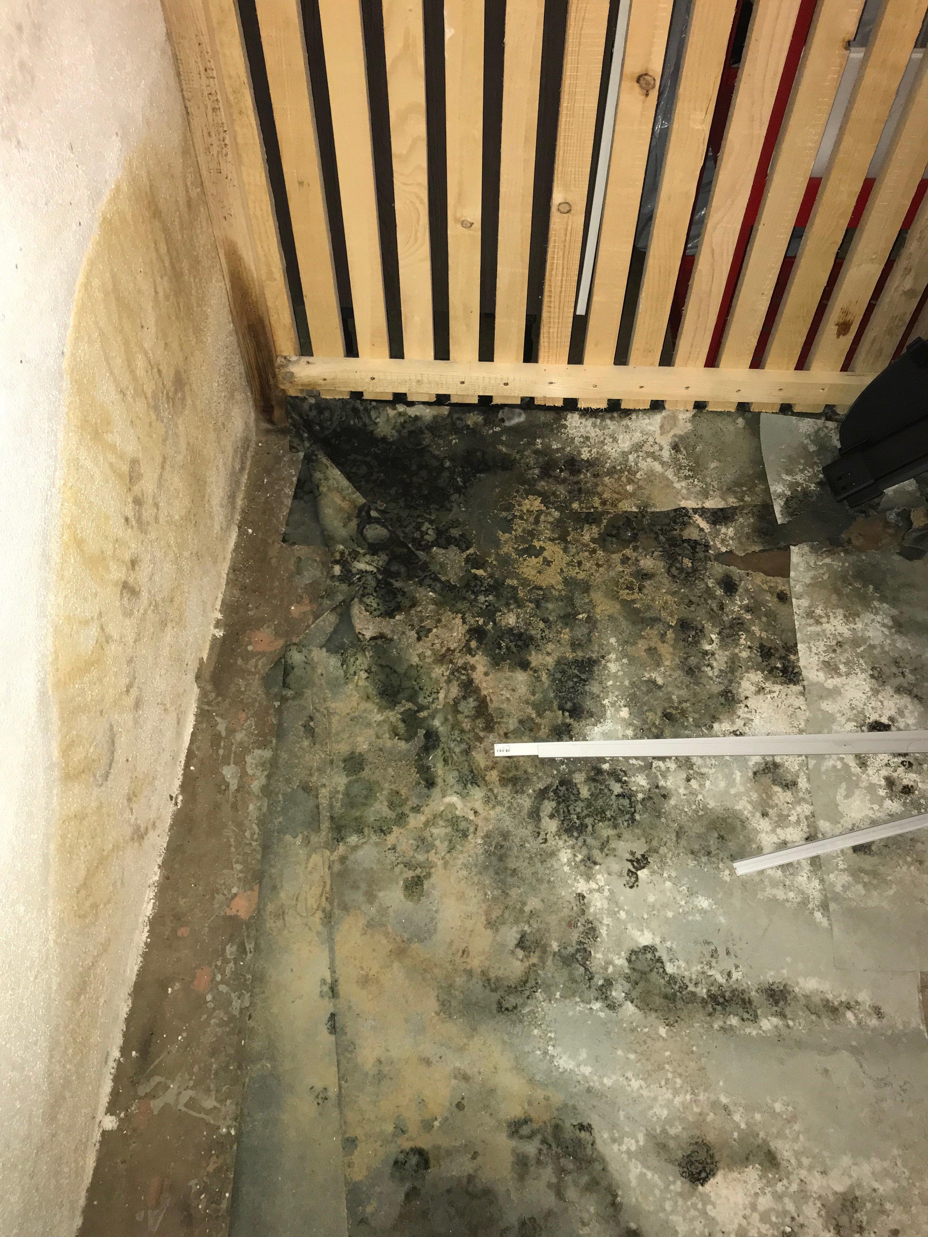 mietminderung bei starker geruchsbel stigung in der wohnung durch schimmel im keller. Black Bedroom Furniture Sets. Home Design Ideas