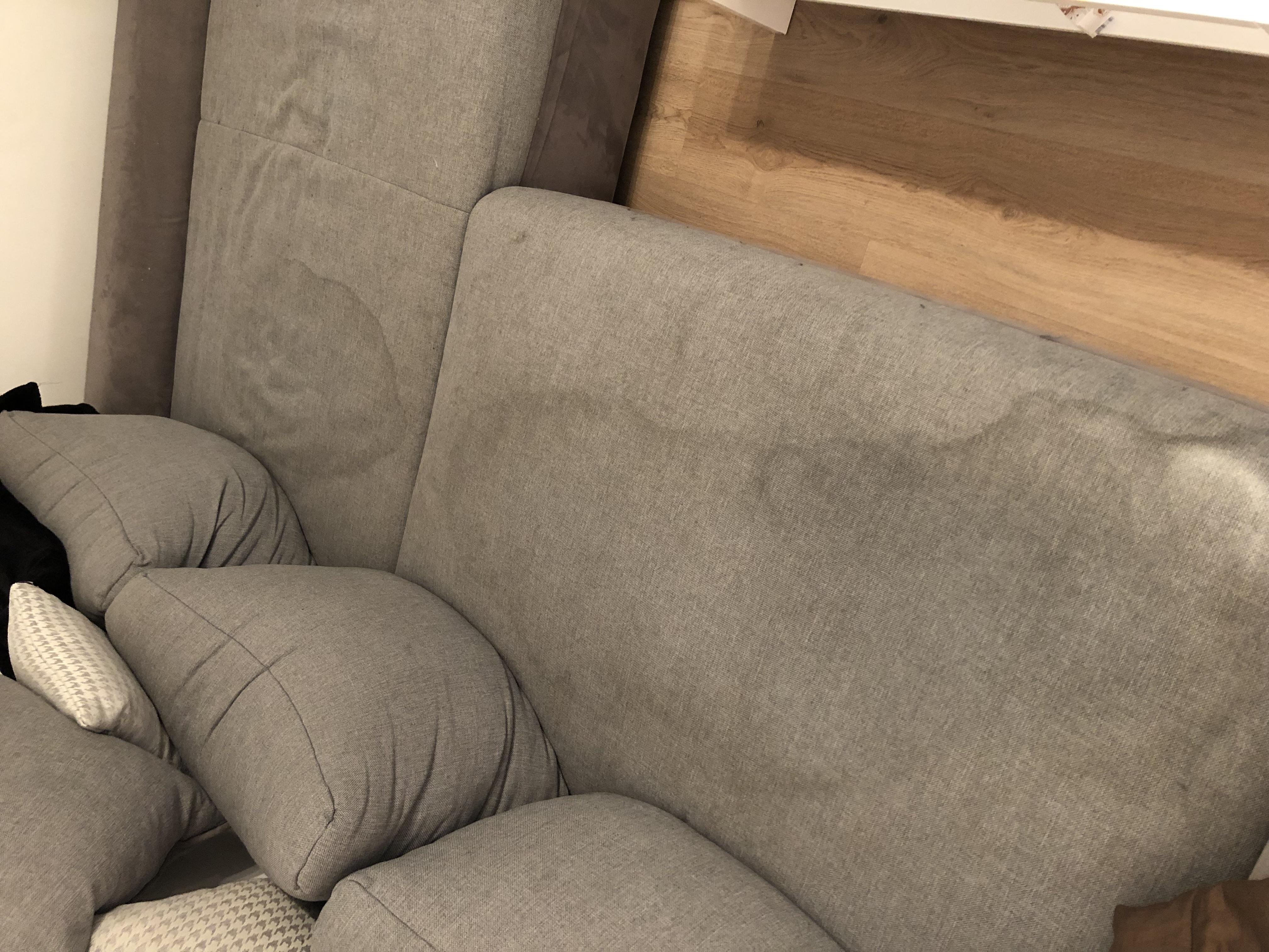 Dampfreiniger Sofa – Caseconrad.com