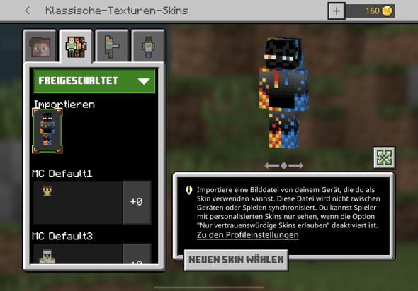 Minecraft Bedrock. Importierter Skin und Handschuhe/Schuhe?