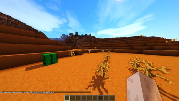 hier die ränder - (Minecraft, Bug, Rahmen)