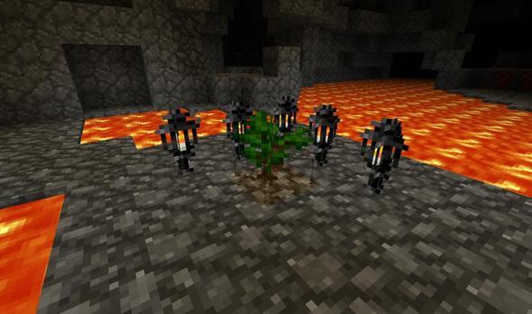 Hier sieht man den Baum-Sapling! - (Minecraft, Baum)