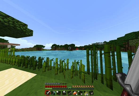 33 - (Minecraft, rechts, items)