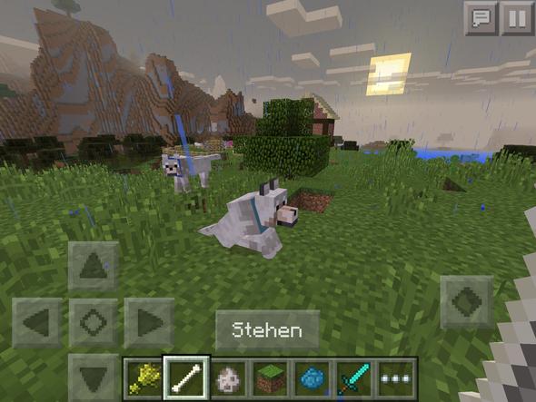 Meine beiden Wuffis - (Minecraft)
