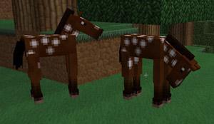 So sieht das Pferd aus. Nur ausgewachsen... - (Minecraft, Minecraft pferd)