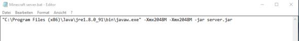 Java Befehl um den Server zu starten - (Minecraft, Server, Java)