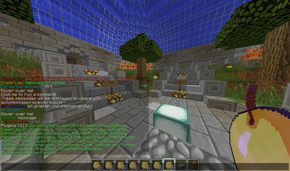 Insterlierte Plugins - (Minecraft, Fehler, Schreiben)