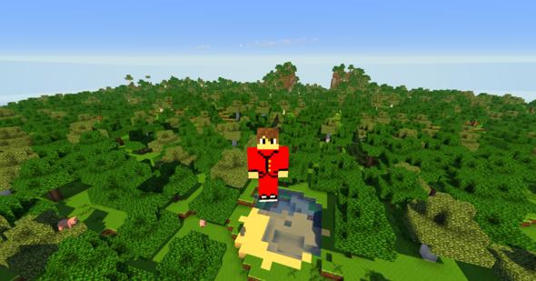 Mein Skin - (Minecraft, Inventar, char)