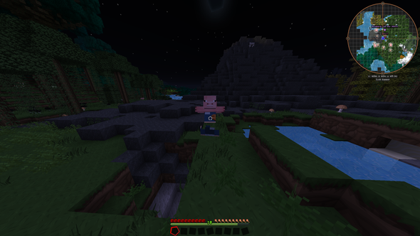 So sieht der Skin im Spiel aus  - (Minecraft, Bug, Skin)