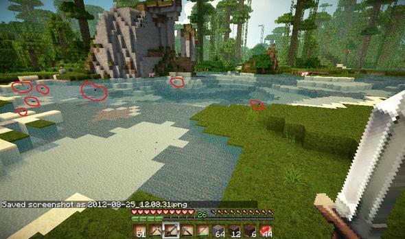 Wasser Bug - (Minecraft, Wasser, Bug)