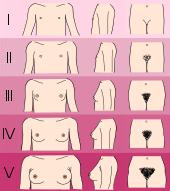 Evaluna 20 brustwachstum