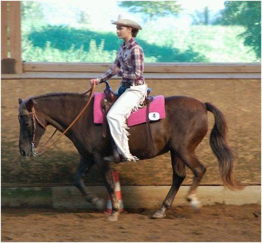 Hier sind wir auf nem Turnier im Oktober 2011 - (Pferde, reiten, Alter)