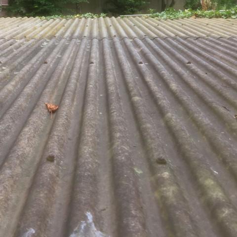 Dachplatten - (Garten, selber machen, Handwerker)