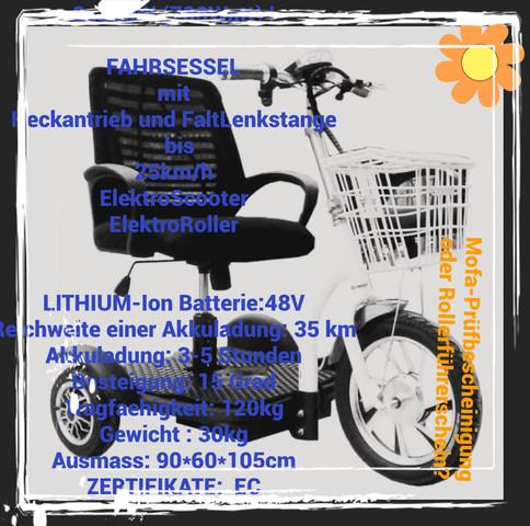 FAHRZEUG - (Freizeit, Gesundheit, Krankheit)