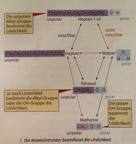 Moleküle Struktur beeinflusst Löslichkeit?