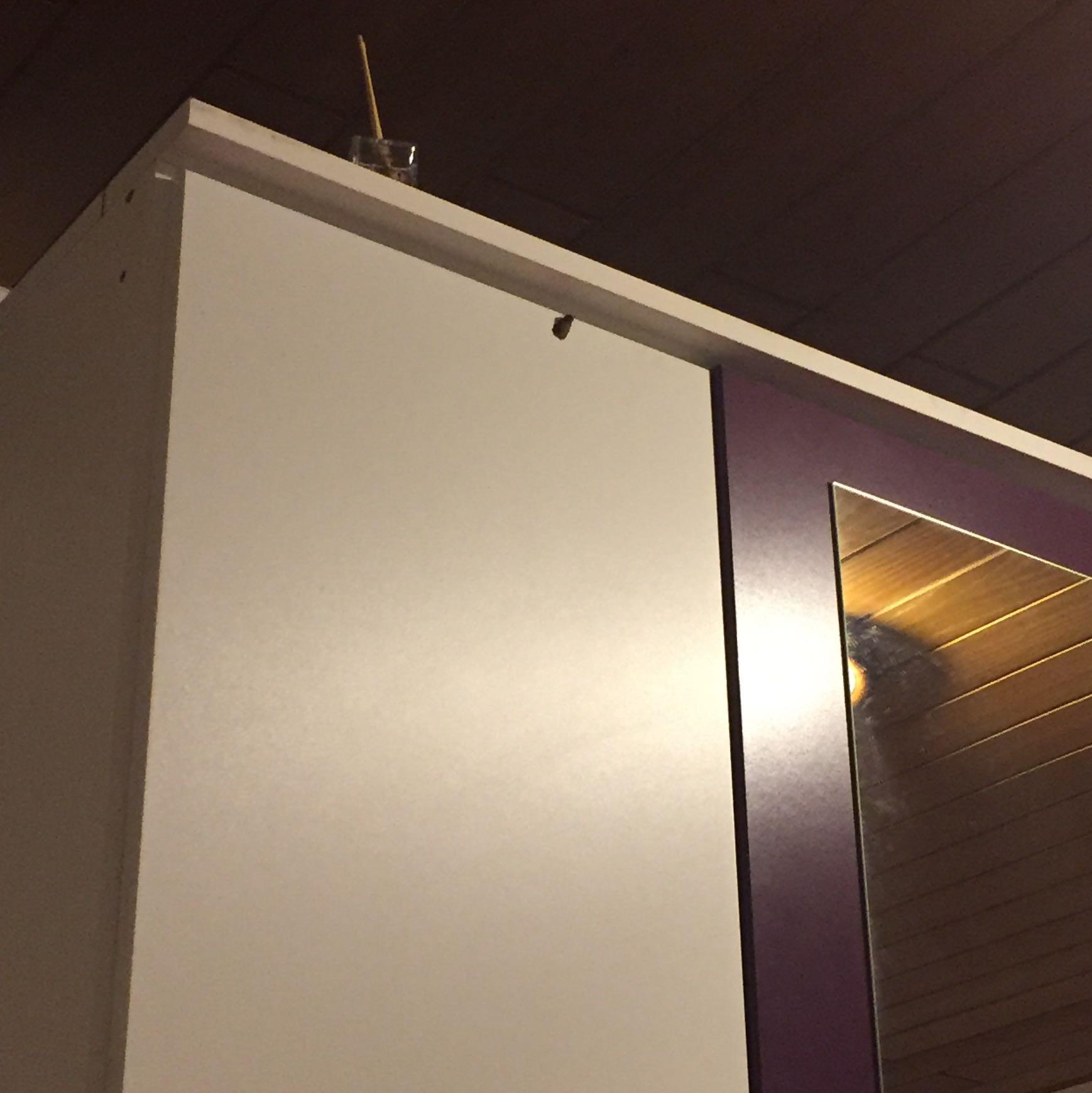 motte im zimmer hilfe insekten motten. Black Bedroom Furniture Sets. Home Design Ideas