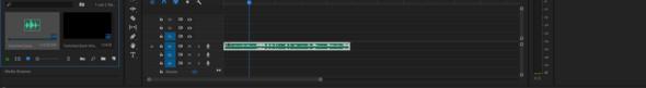 .mp4 Datei wird nur als Audio in Premiere importiert?