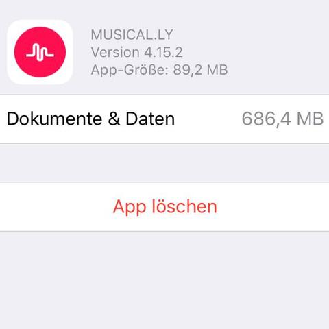Speicher - (Handy, iPhone, Apple)