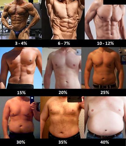 Bei mir etwa 20-22% - (Fitness, Diät, Muskelaufbau)