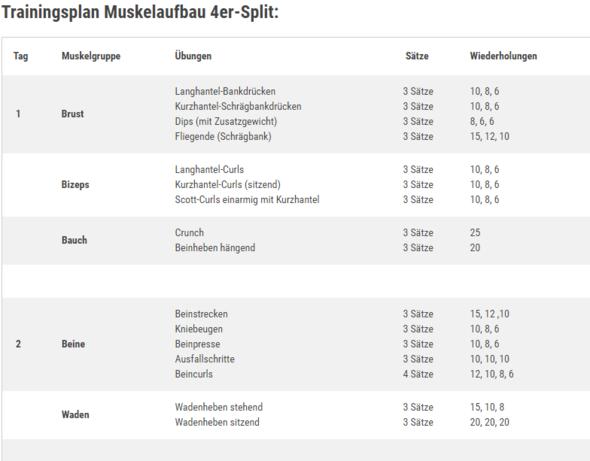 Muskelaufbau Wechsel Von Gk Auf 4er Split Sport Fitness