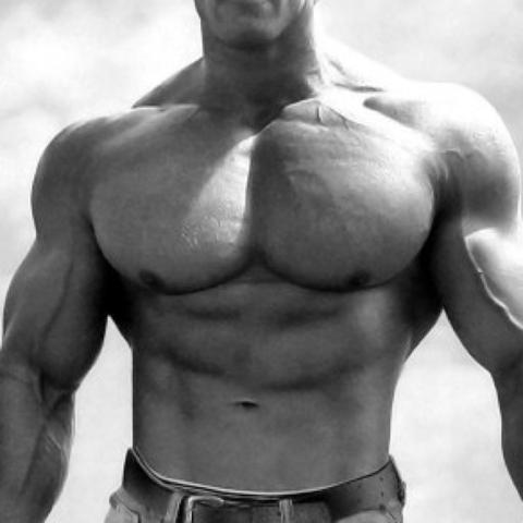 Berühmt Gorilla Anatomie Muskeln Fotos - Anatomie Von Menschlichen ...