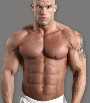 Bild 1) Wie lange dauert das? - (Muskeln, Muskelaufbau, muskuloes)