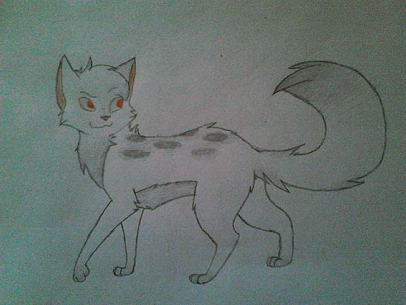 Ja und das ist die Katze. (weiblich) - (Katze, Name, Warrior Cats)