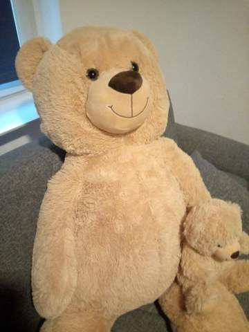 Name for my teddy