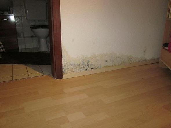 Fabulous Nasse Wand selber trockenlegen? (Wasserschaden) OB48