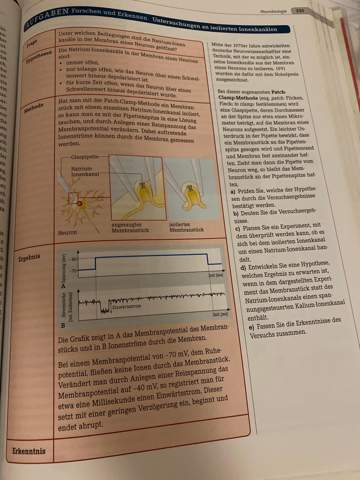 Natrium-Ionenkanal - Experiment entwickeln wie?