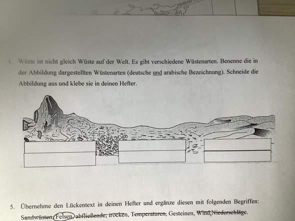 Nenne drei Wüstenarten (deutsche und arabische Bezeichnung)?
