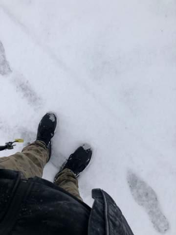 - (Schuhe, Sneaker, Schnee)