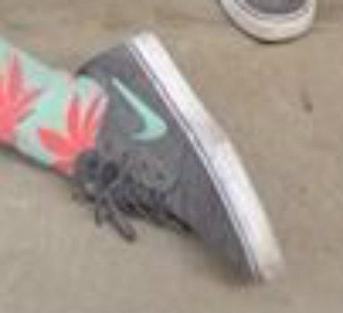 Die schuhe - (Schuhe, Nike, Vans)
