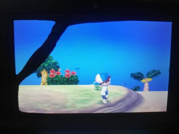 Nintendo 3ds Bildschirm beschädigt?