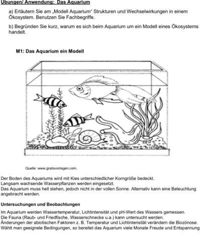 Ökosystem (Struktur und Wechselwirkungen)?