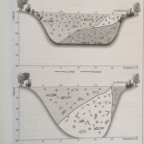 Abbildung  - (Biologie, Wasser, See)