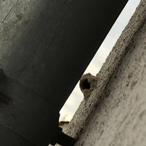 Omg... Was ist das?😱  Ist das ein Spinnennest?