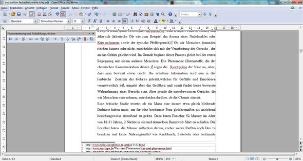 Screenshot von meinem Text , Facharbeit  - (Schule, Schreiben, OpenOffice)
