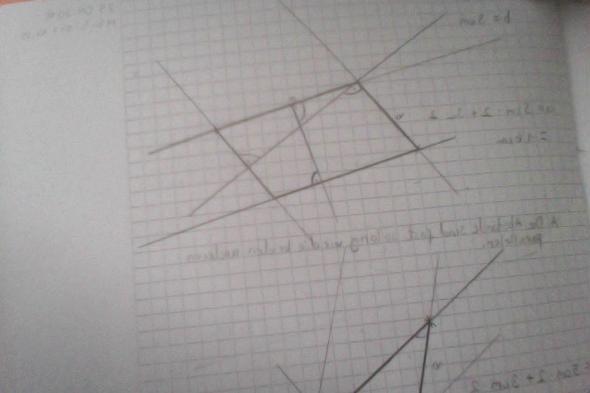 Parallelogramm zeichnen das kein Rechteck ist?! (Mathematik)