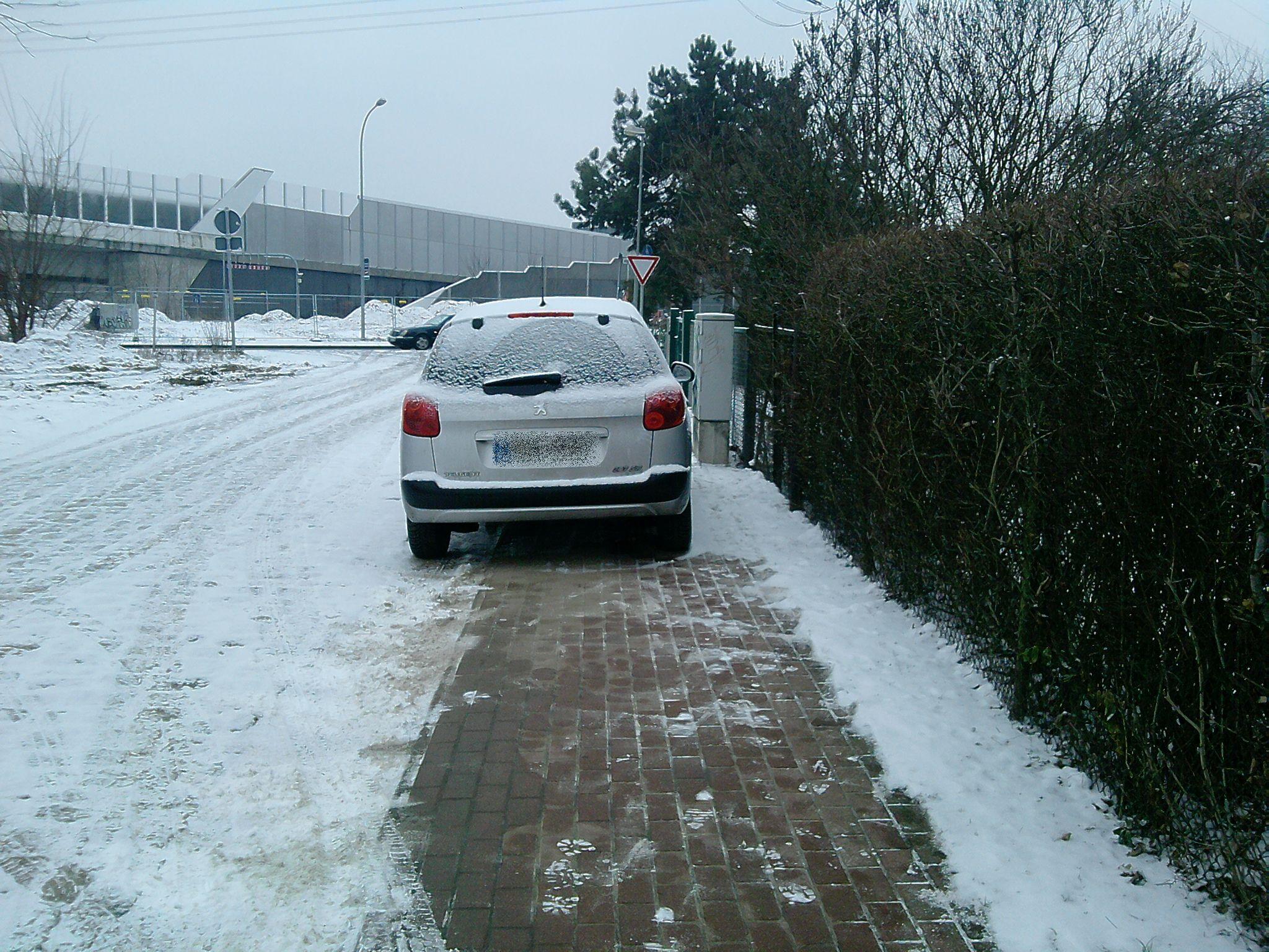 Parken Auf Grünfläche Bnbnews.co