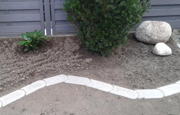 Bild 1 - (Garten, Pflanzen, Beet)