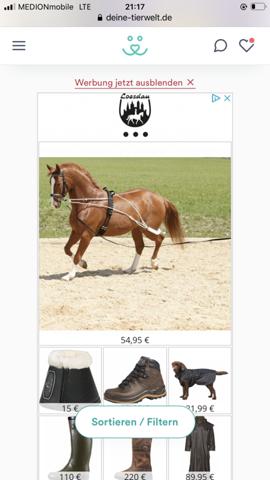 Pferde longierhilfe?