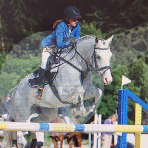 Das Pony allgemein ( Vlt interessiert es jemanden 😄) - (Pferde, Ohr, Juckreiz)