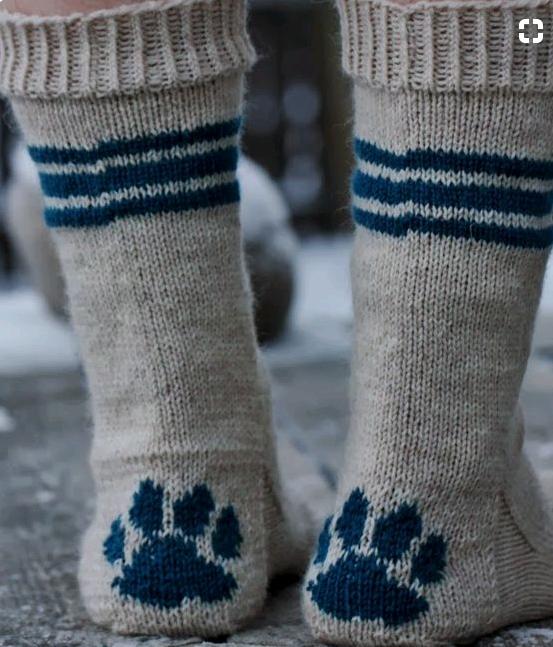 Pfote in Socken stricken? (Handarbeit, Wolle)