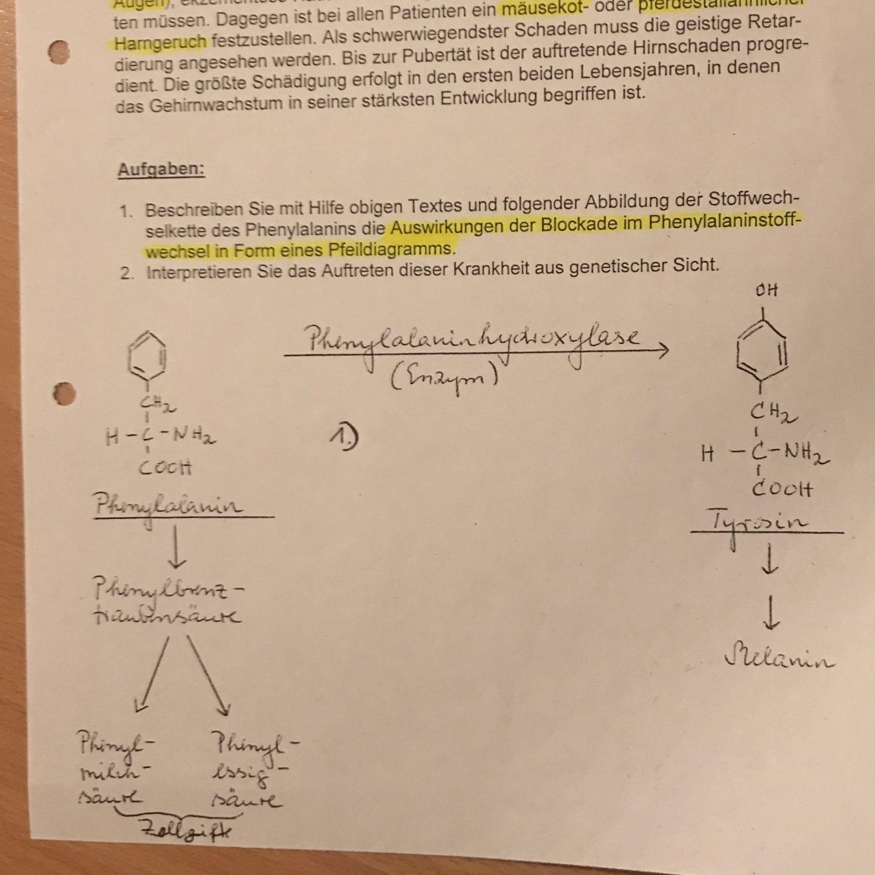 Phenylketonurie Erklärung? (Schule, Chemie, Biologie)