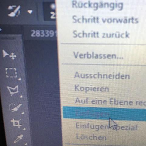 Ausgegraute Option - (Foto, Photoshop)