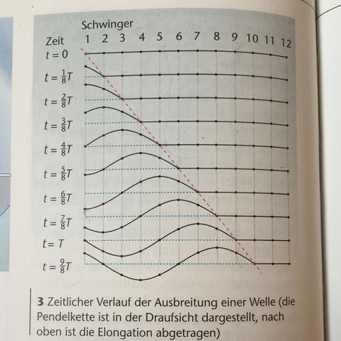 Darstellung der einzelnen Pendel - (Schule, Physik, Wellen)