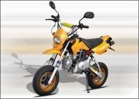 Pit bike mit straßenzulassung?
