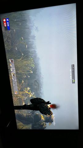 Purer Nebel trotz Fackel - (Games, Gaming, Playstation 4)